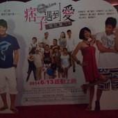 Movie, 痞子遇到愛(Peace In Love), 電影看板