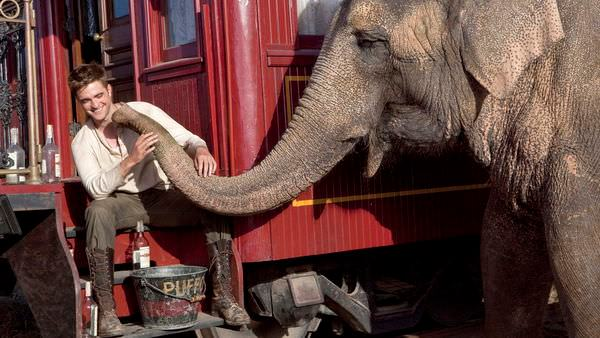 Movie, Water for Elephants(大象的眼淚)(情約奇藝坊), 電影劇照