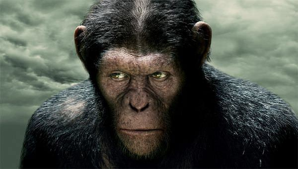 Movie, Rise of the Planet of the Apes(猩球崛起)(猿人爭霸戰:猩凶革命), 電影劇照