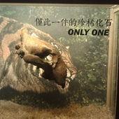 冰原奇跡-史前巨獸.長毛象特展, 虎頭骨化石