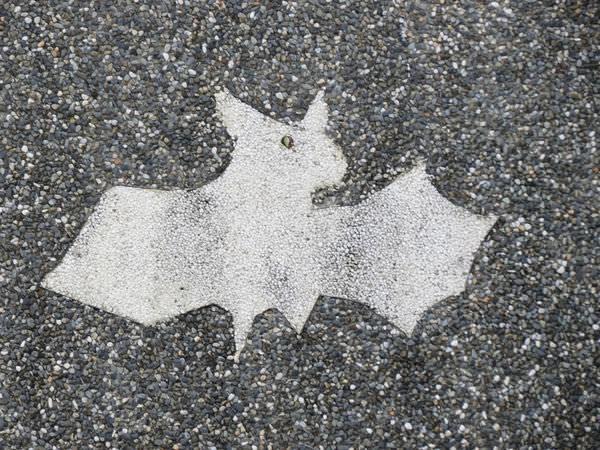 北部濱海公路, 蝙蝠洞