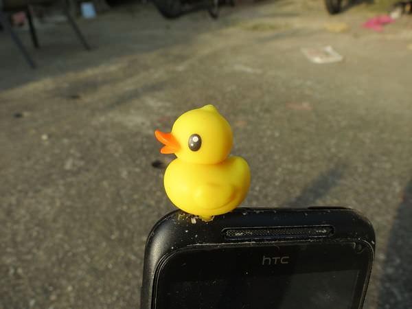 黃色小鴨耳機塞