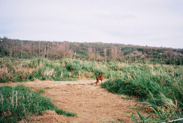 2005年環島, day4,