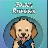 Criminal Case, 警犬商店, Golden Retriever