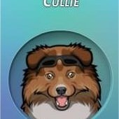 Criminal Case, 警犬商店, Collie