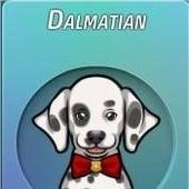 Criminal Case, 警犬商店, Dalmatian