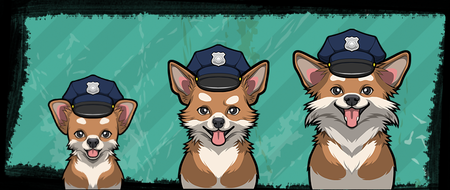 Criminal Case, 警犬商店, Chihuahua