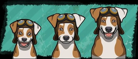Criminal Case, 警犬商店, Jack Russell Terrier