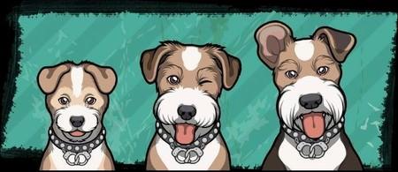 Criminal Case, 警犬商店,