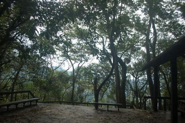 小烏來森林步道, 桃園縣復興鄉