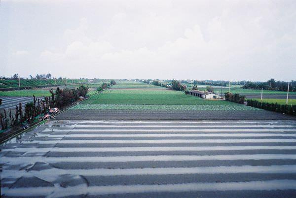 2005年環島, day2, 雲林農田