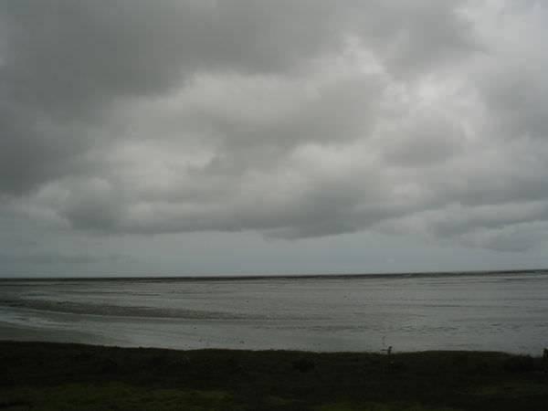 2005年環島, day1, 濱海野生動物保護區