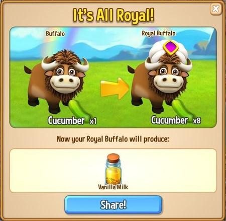 Royal Story, Royal Buffalo