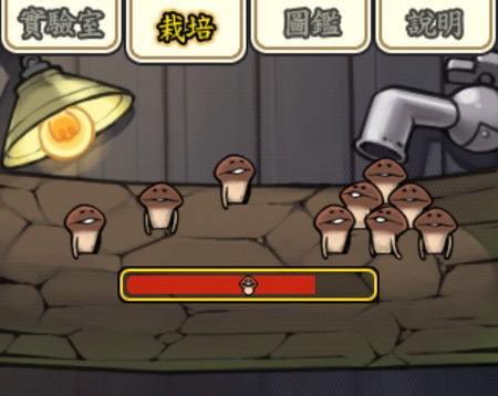 觸摸偵探菇菇栽培研究室