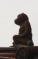 角獸, 猴