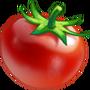 cw2_ingredient_tomato_cookbook__83bc9