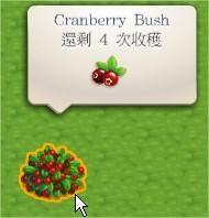 蔓越莓, ChefVille
