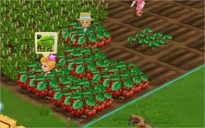FarmVille 2(農場小鎮二)鄰居互動