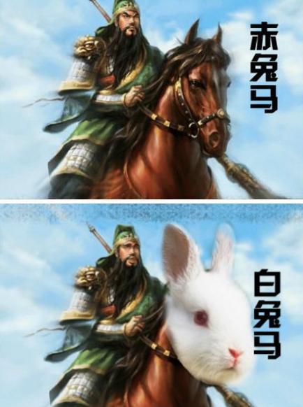 赤兔馬 / 白兔馬