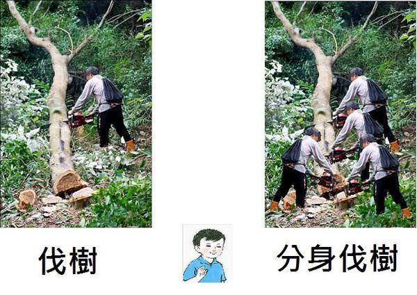 伐樹 / 分身伐樹