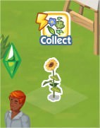 The Sims Social, Flower Head Garland