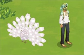 The Sims Social, Oasis White Peacock