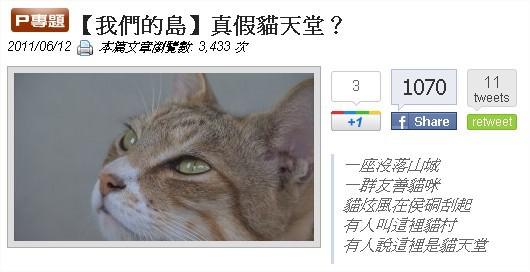 【我們的島】真假貓天堂?