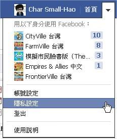 Facebook, 新版.動態時報, 切換身份