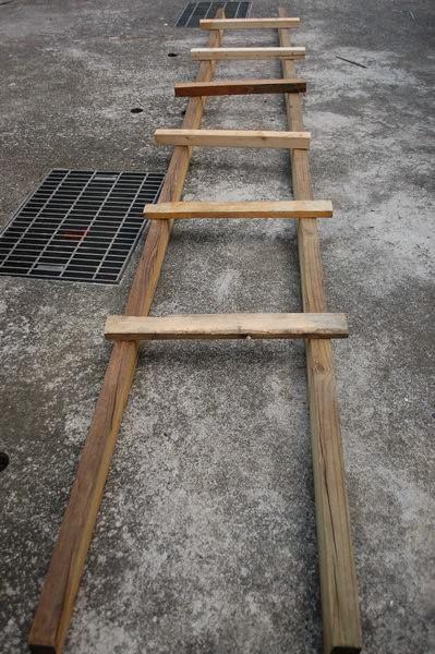 樹屋計畫6