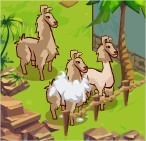 Adventure World, Llama Research?