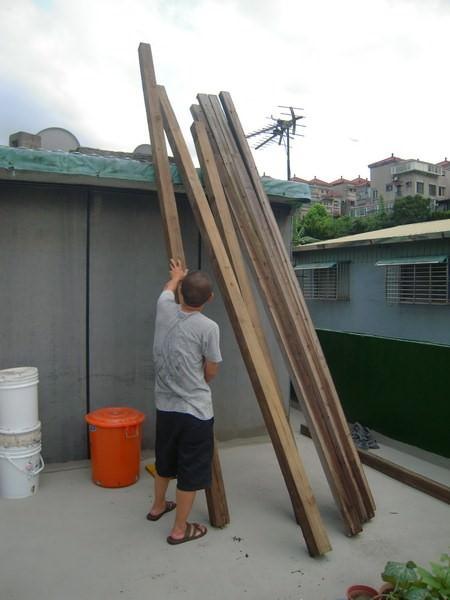 樹屋計畫4