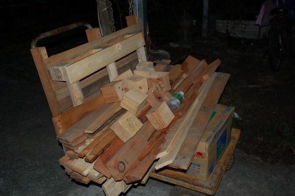 樹屋計畫1