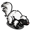 Silverback Skunk 銀背鼬鼠