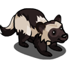 Black Wolverine 黑狼獾