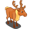 Golden Elk 金駝鹿