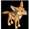 Kit Fox 小狐狸