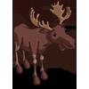 Moose 駝鹿