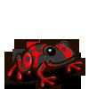 Red Dart Frog 紅毒箭蛙