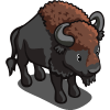 Bison 野牛