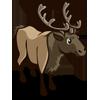 Elk 麋鹿