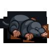 Mole 鼴鼠