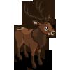 Red Deer 紅鹿