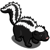 Skunk 臭鼬鼠