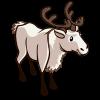 White Reindeer 白馴鹿