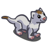 White Ermine 白貂