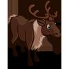 Reindeer 馴鹿