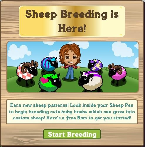 FarmVille, sheep