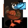 duck_ruddy.png