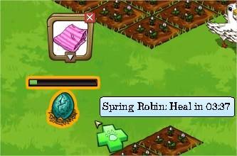 FrontierVille, spring robin