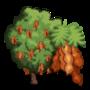 Tamarind Tree 羅望子樹